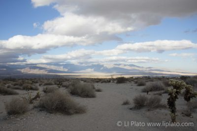 Landscape of Valley near Borrego Springs California