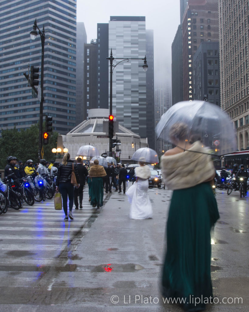 Wedding Party at the Anti-Trump Protests, Chicago, Illinois, United States, 2017